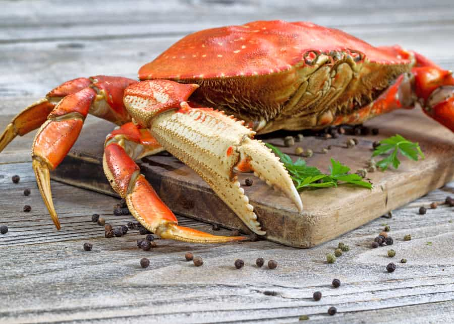 Order Dungeness Crab Online - Overnight Shipping